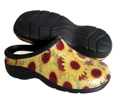 Buy Sunflowers Shedshoes online
